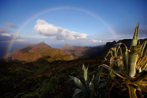 Tenerife – Un Viaggio Esotico per un Caldo Inverno
