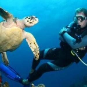 Vacanze al Mare - Luoghi Migliori per le Immersioni