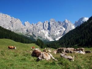 In Bicicletta per il Trentino – Gli Itinerari Più Belli