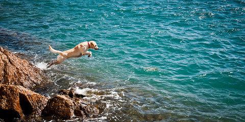 vacanza-estate-costa-brava