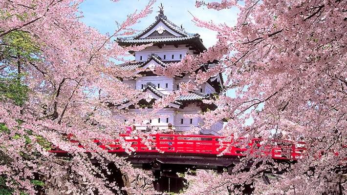 Vancanza in Giappone - Documenti Necessari e Consigli Utili 2