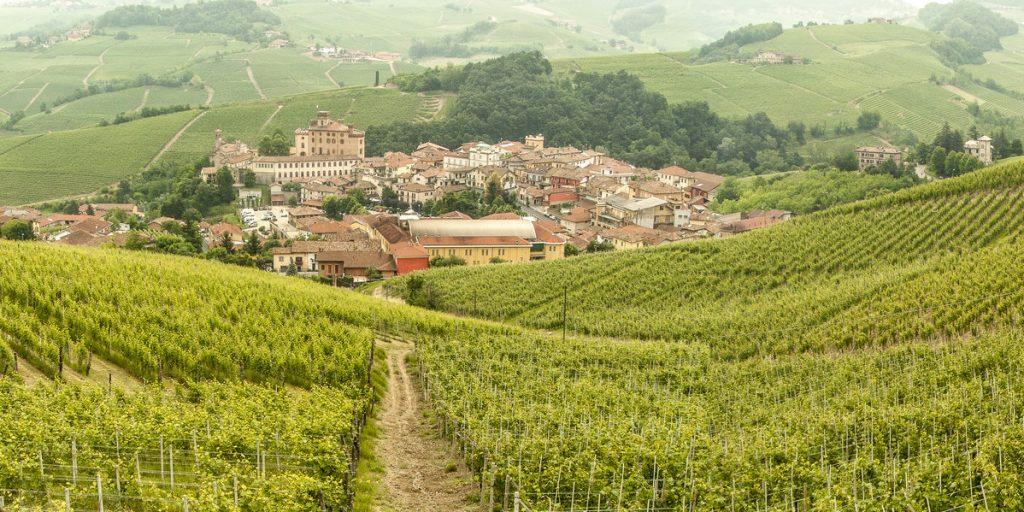 Barolo in Piemonte